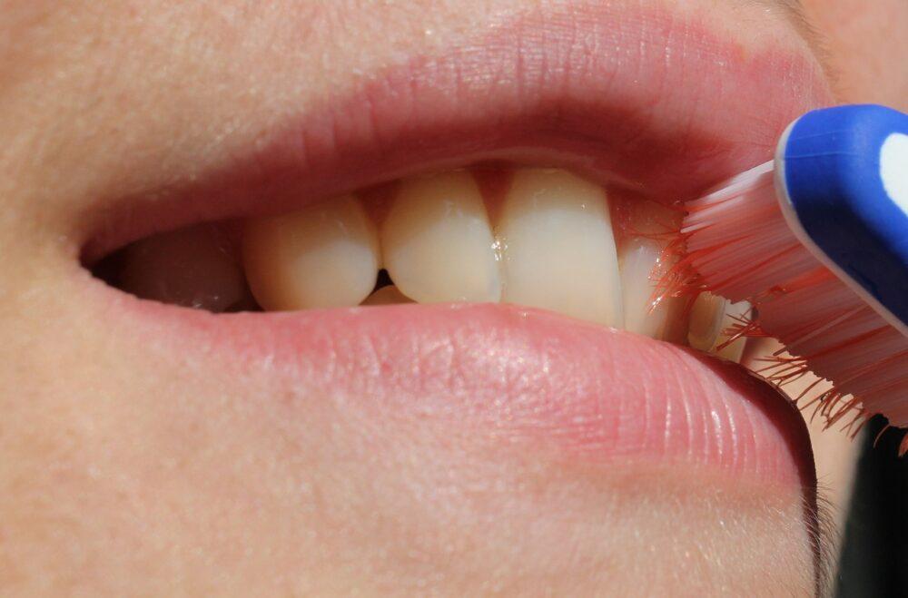 くちびる 歯